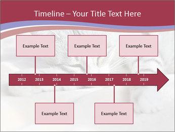 0000082502 PowerPoint Template - Slide 28