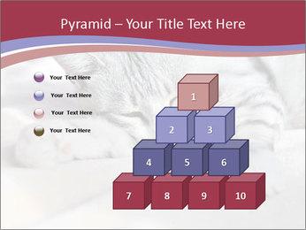 0000082502 PowerPoint Template - Slide 31