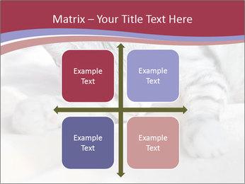 0000082502 PowerPoint Template - Slide 37