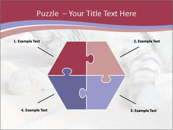 0000082502 PowerPoint Template - Slide 40
