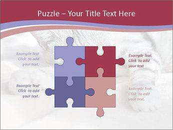 0000082502 PowerPoint Template - Slide 43