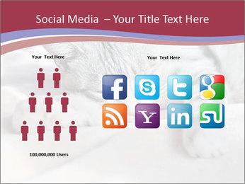 0000082502 PowerPoint Template - Slide 5