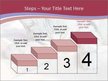 0000082502 PowerPoint Template - Slide 64
