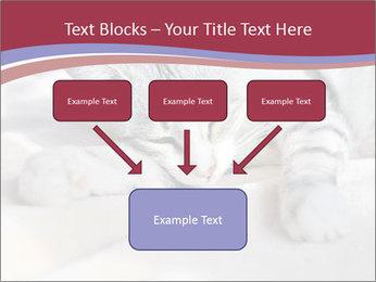 0000082502 PowerPoint Template - Slide 70
