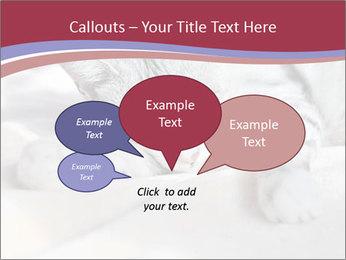0000082502 PowerPoint Template - Slide 73