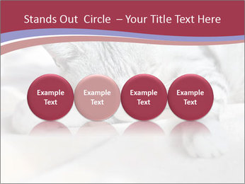0000082502 PowerPoint Template - Slide 76