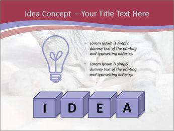 0000082502 PowerPoint Template - Slide 80