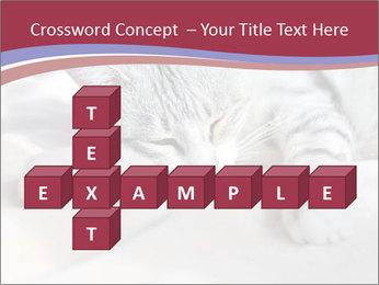0000082502 PowerPoint Template - Slide 82