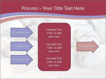 0000082502 PowerPoint Template - Slide 85