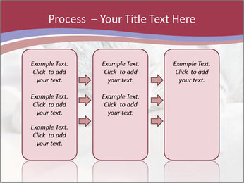 0000082502 PowerPoint Template - Slide 86