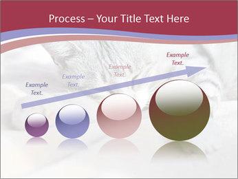 0000082502 PowerPoint Template - Slide 87