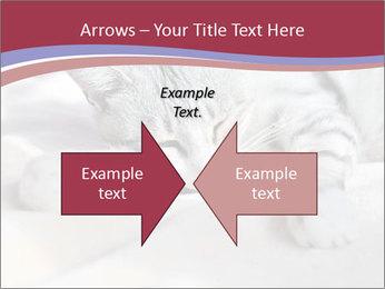 0000082502 PowerPoint Template - Slide 90