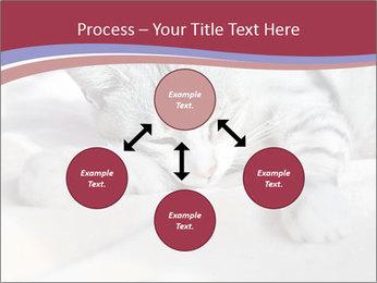 0000082502 PowerPoint Template - Slide 91