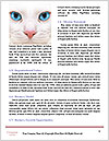 0000082502 Word Template - Page 4