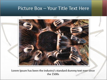 0000082504 PowerPoint Template - Slide 15