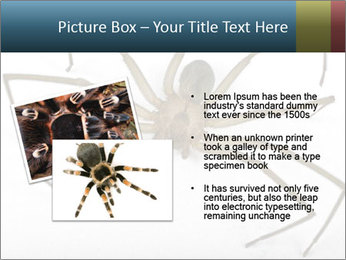 0000082504 PowerPoint Template - Slide 20