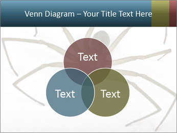0000082504 PowerPoint Template - Slide 33