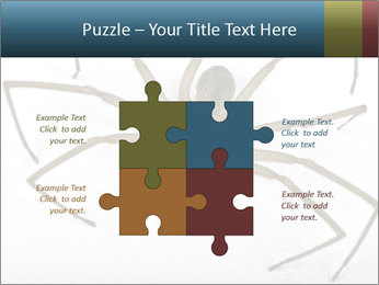 0000082504 PowerPoint Template - Slide 43