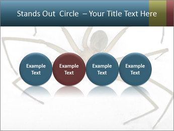 0000082504 PowerPoint Template - Slide 76