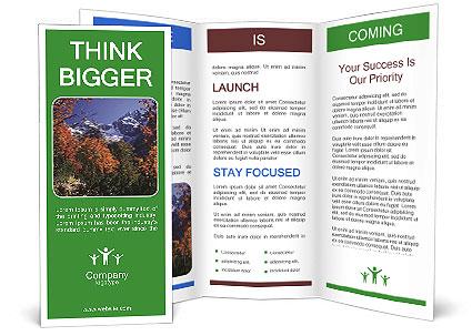 0000082506 Brochure Template