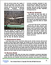 0000082506 Word Template - Page 4