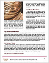 0000082508 Word Template - Page 4