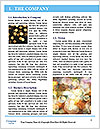 0000082509 Word Template - Page 3