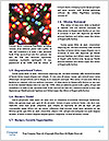 0000082509 Word Template - Page 4