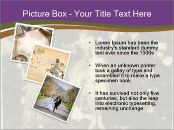 0000082511 PowerPoint Template - Slide 17