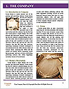 0000082511 Word Templates - Page 3