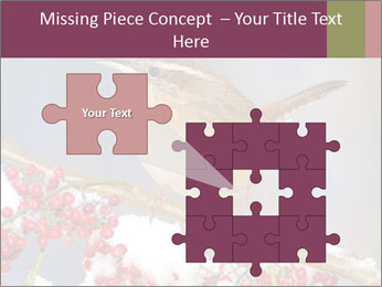 0000082513 PowerPoint Template - Slide 45