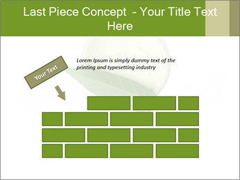 0000082517 PowerPoint Templates - Slide 46