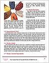 0000082519 Word Templates - Page 4