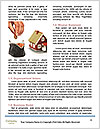 0000082520 Word Template - Page 4