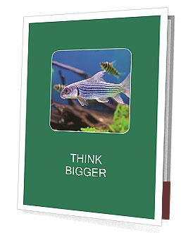 0000082523 Presentation Folder