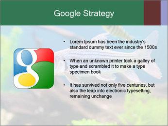 0000082523 PowerPoint Templates - Slide 10