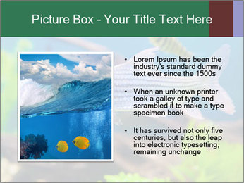0000082523 PowerPoint Template - Slide 13