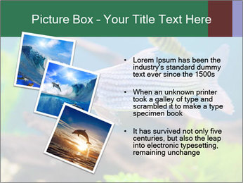 0000082523 PowerPoint Template - Slide 17