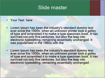 0000082523 PowerPoint Templates - Slide 2
