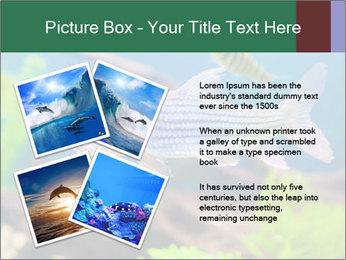 0000082523 PowerPoint Templates - Slide 23