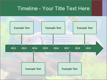 0000082523 PowerPoint Templates - Slide 28