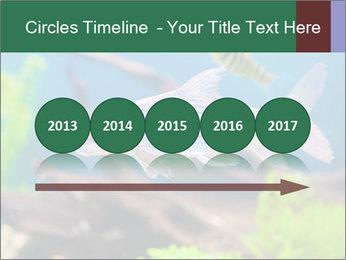 0000082523 PowerPoint Templates - Slide 29