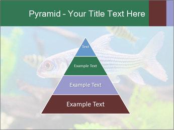 0000082523 PowerPoint Templates - Slide 30