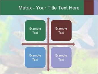 0000082523 PowerPoint Templates - Slide 37