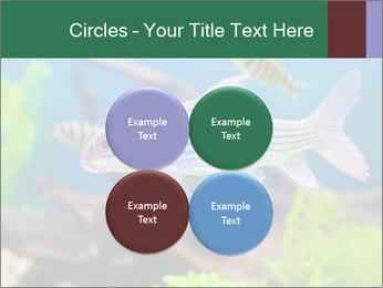 0000082523 PowerPoint Templates - Slide 38