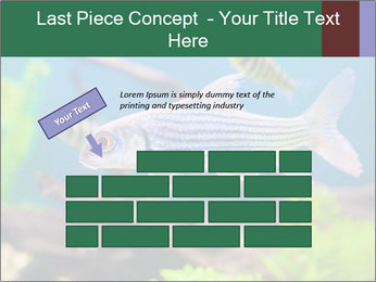 0000082523 PowerPoint Template - Slide 46