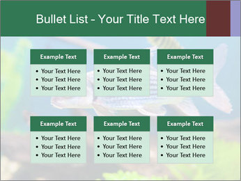 0000082523 PowerPoint Templates - Slide 56