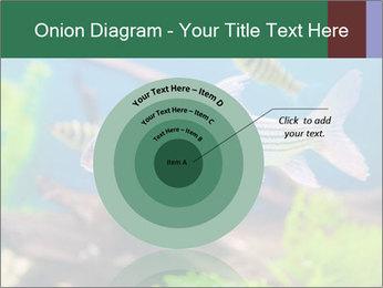 0000082523 PowerPoint Templates - Slide 61