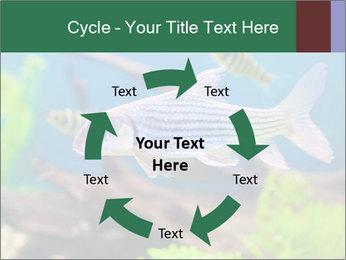 0000082523 PowerPoint Templates - Slide 62
