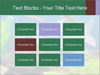 0000082523 PowerPoint Templates - Slide 68